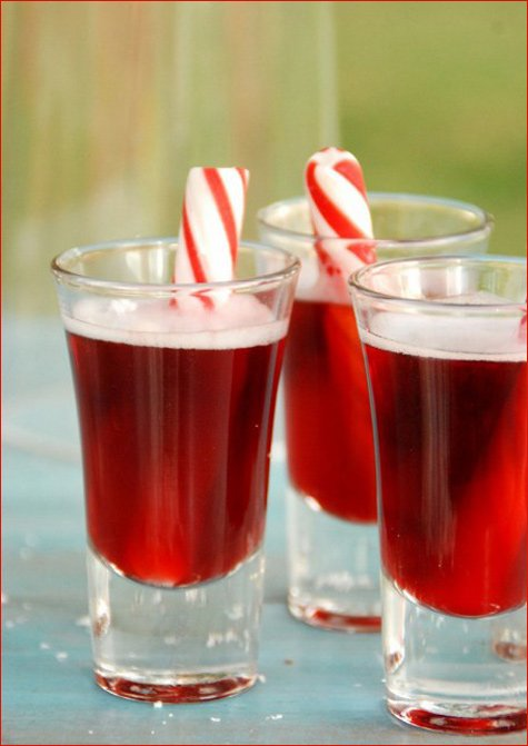 Christmas In July Party Ideas Part - 36: Christmas In July Party U0026 Wedding Ideas. U201c