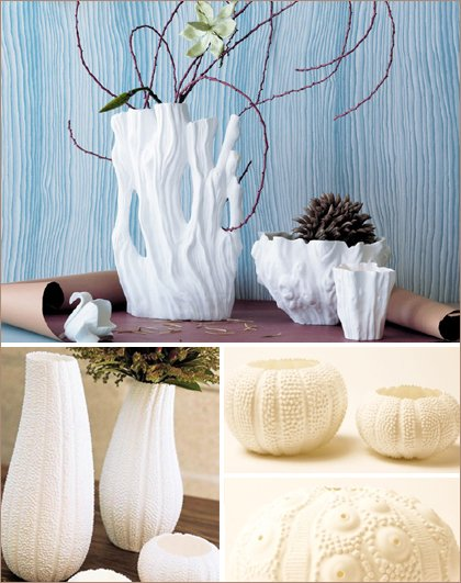 sea urchin and driftwood vases