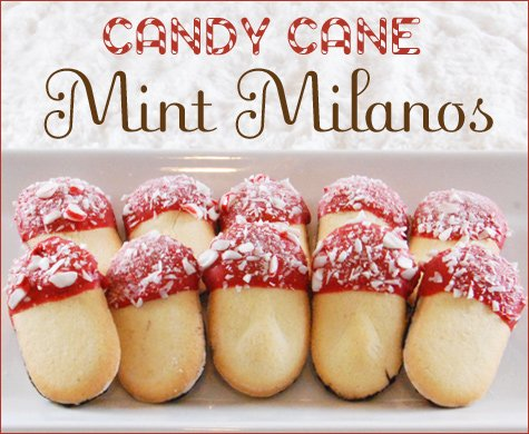 holiday mint milano cookies