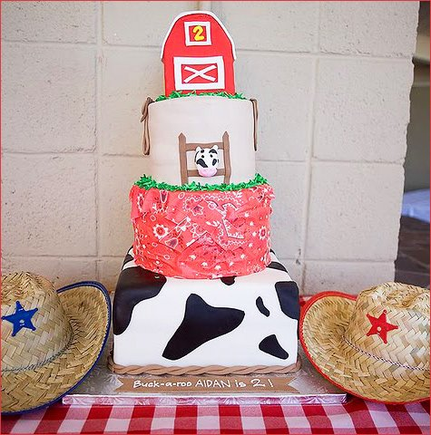Country Western Birthday Party Ideas
