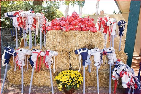Cowboy Barnyard Birthday Party Ideas