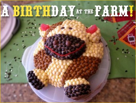 farm barnyard birthday party ideas