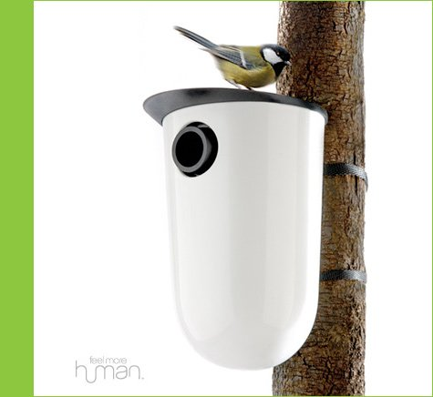 modern bird houses & feeders