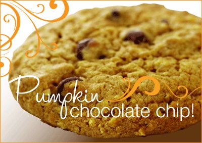 Michael's Cookies - Pumpkin Chocolate Chip