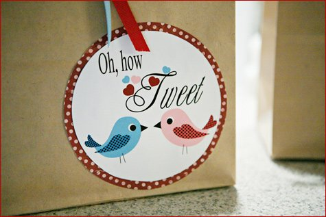 Love Birds party theme ideas