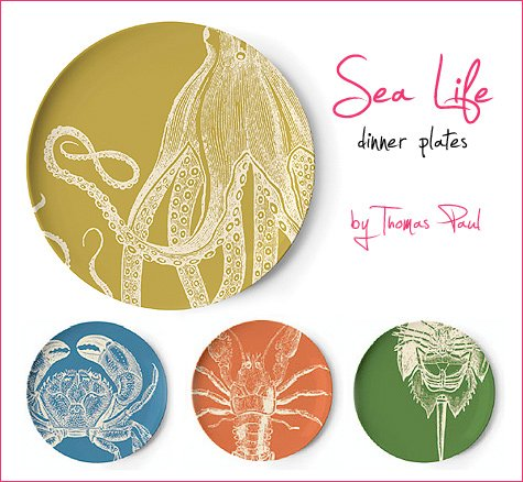 Thomas Paul sea life plates