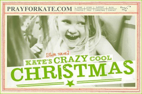 Kate Mcrae - Crazy Cool Christmas Toy Drive