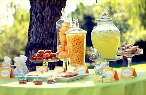 spring party bridal shower wedding ideas