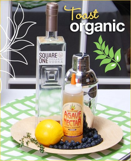 organic cocktail recipe square one vodka