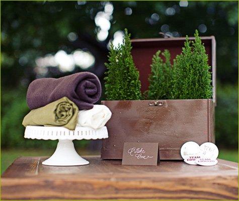 Twilight wedding party ideas