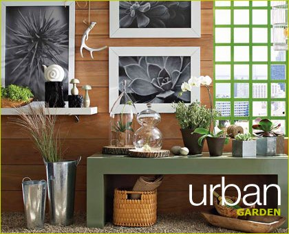 west elm urban garden