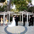 yellow_limoncello_wedding_4