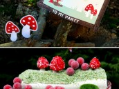 littleredridinghood_birthdayparty_3