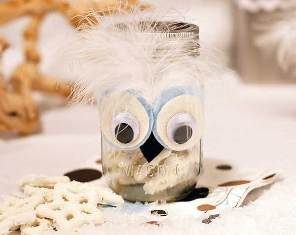 Winter Owl Baby shower Ideas
