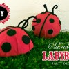 ladybugpartydecor_diytutorial_1