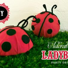 ladybugpartydecor_diytutorial_1