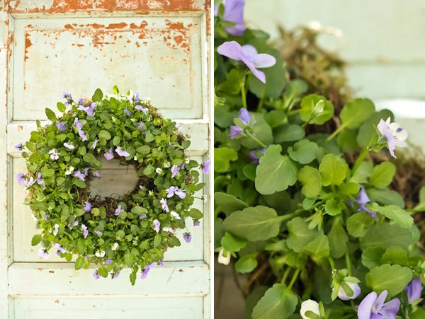 Living Wreath - DIY Tutorial by Kim Foren
