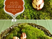 Natural Dyed Sienna Brown Easter Eggs