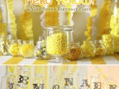 1_helloyellow_birthdayparty_b