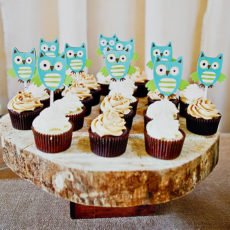Rustic Owl Themed Baby Shower - Cupcakes