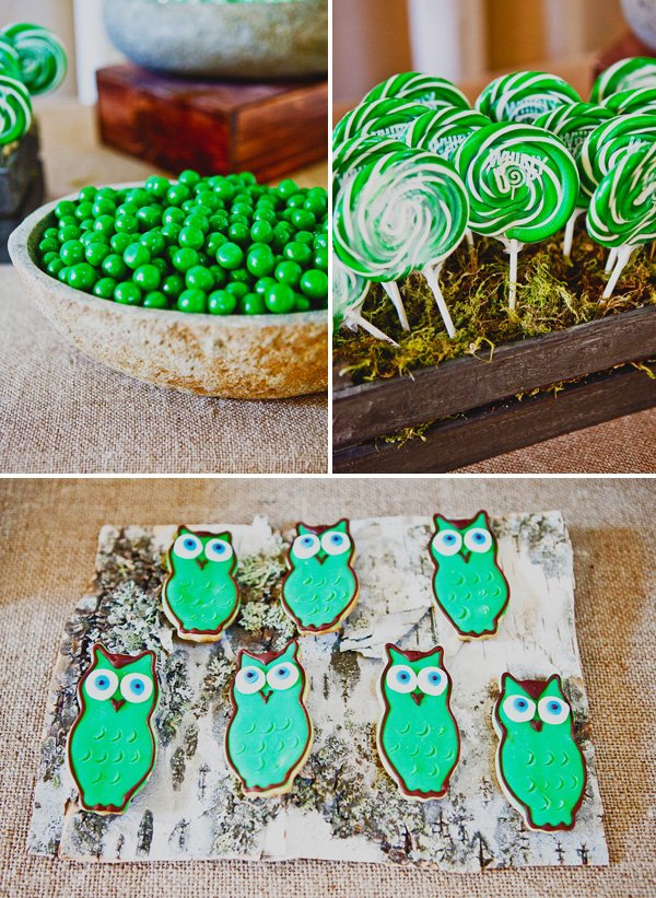 Rustic Owl Themed Baby Shower