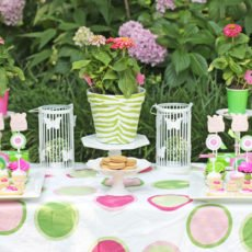 Zebra and Zinnia Garden Party