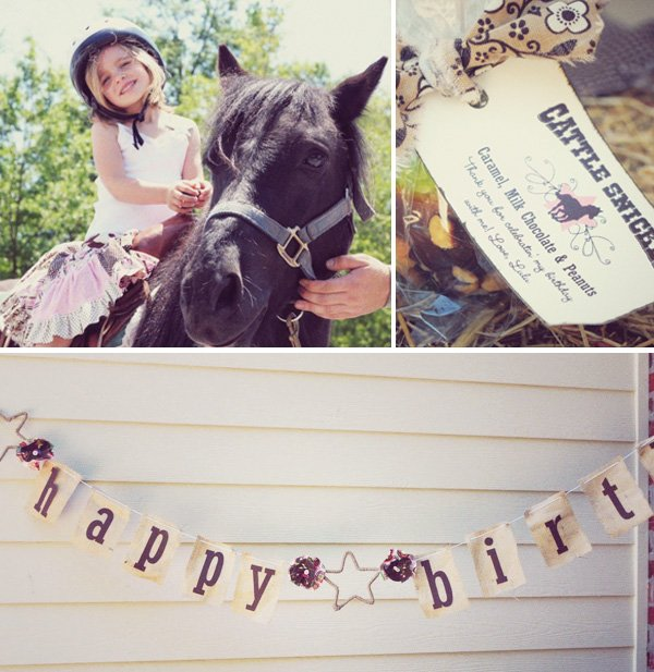 Cowgirl Banner and More