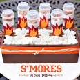 smores_pushpops_recipe_1