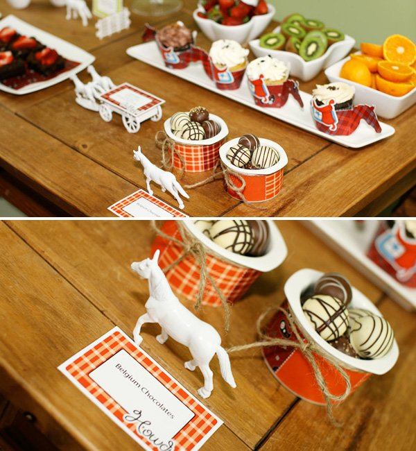 Modern Cowboy Birthday Party