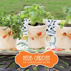 DIY Herb Garden Gifts or Party Favors