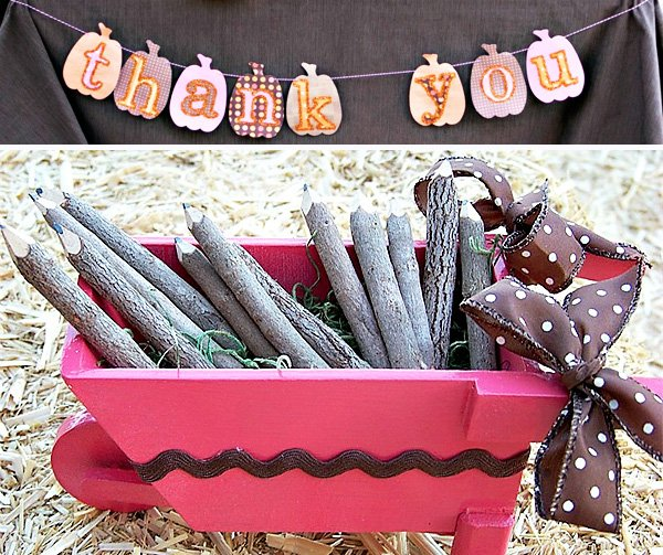 Girlie Fall Pumpkin Themed Birthday Party