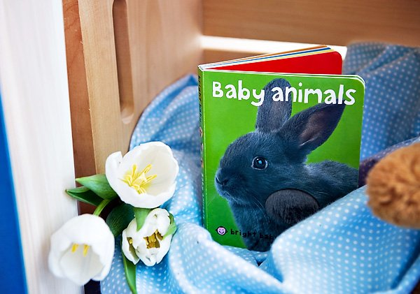 Baby Animals Book - Baby Shower Decorations