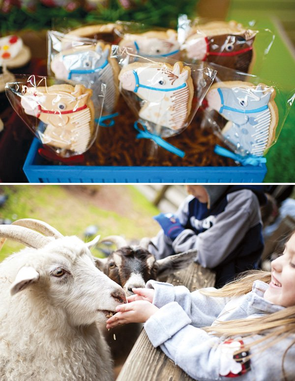 choo choo farm animal birthday party horse cookies and goat feeding