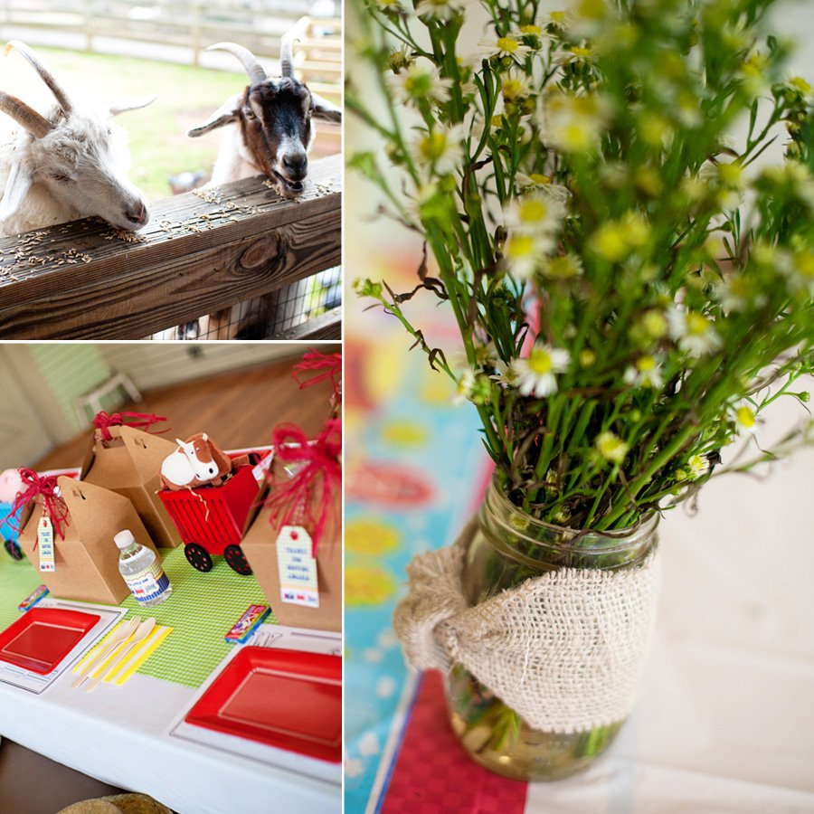 choo choo animal farm party flowers, goats, petting zoo for the party activitiy