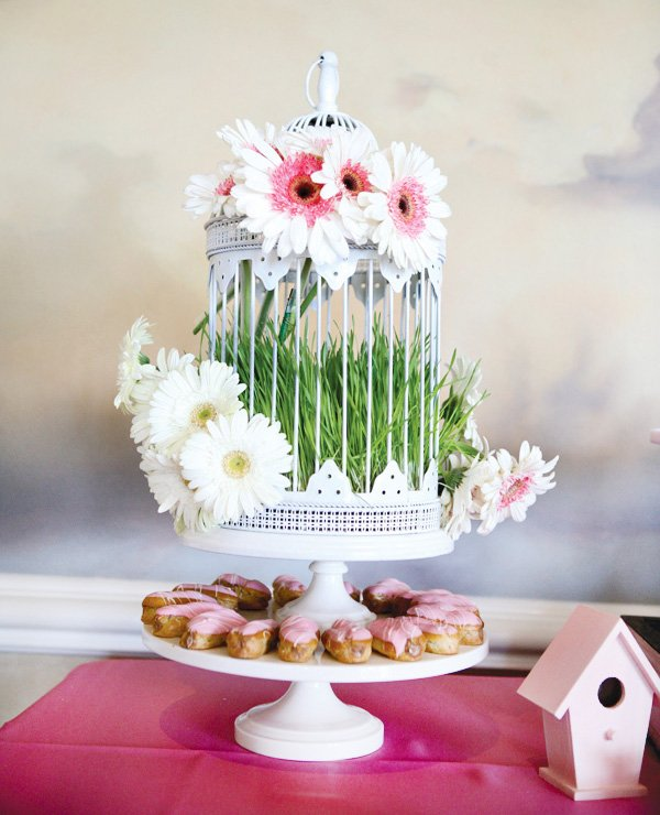 birdcage daisies and desserts