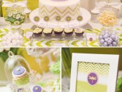 dragonfly baby shower in green and purple chevron