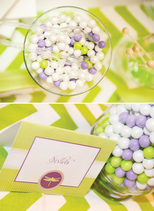 dragonfly baby shower sixlets