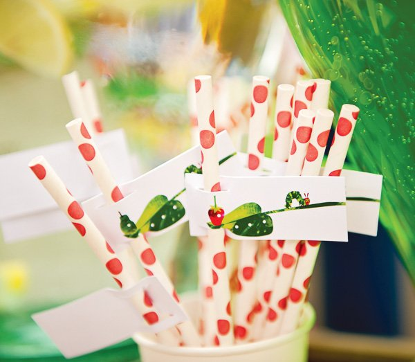 hungry caterpillar birthday party polka dot straws