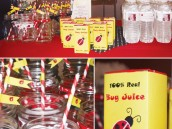 ladybug birthday juice labels and mason jars with red stripe straws