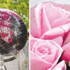 pink safari baby shower globe and florals