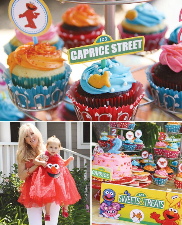 Groovy Elmo Dorothy Sesame Street Birthday Party Hostess With The Personalised Birthday Cards Petedlily Jamesorg