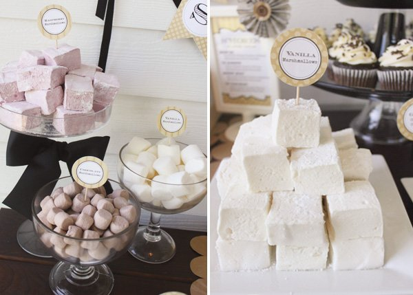 s'mores bar with homemade flavored marshmallows in coconut and raspberry