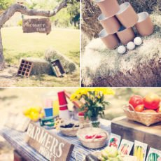 vintage county fair party ideas