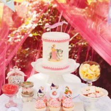 vintage circus party ideas