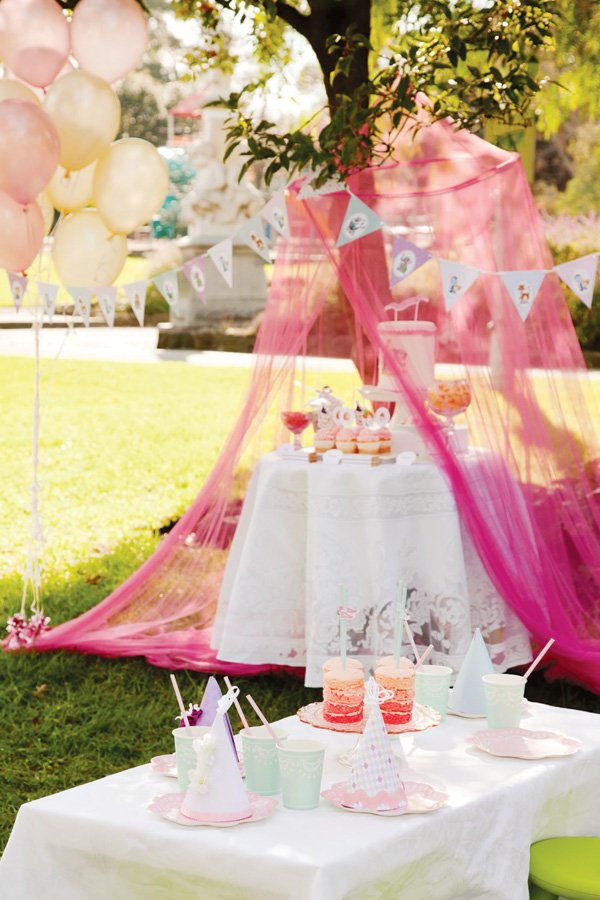 pink vintage circus birthday party
