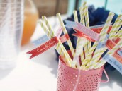 Twins Pinwheel Party Stripey Straws Drink Flags