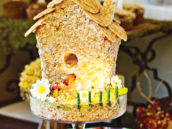 nature bird house cake