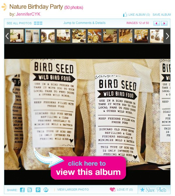 Nature-party-bird-seed-album