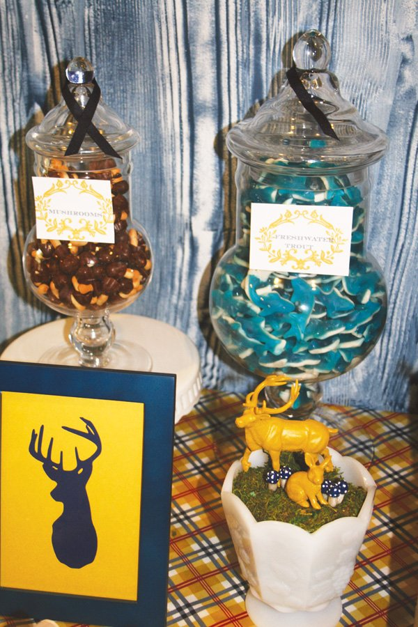 modern nature inspired party candy