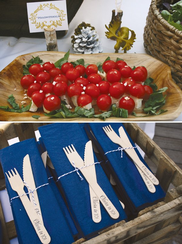modern nature inspired party tomato toadstools